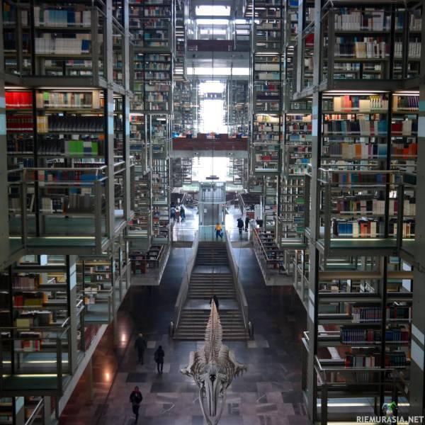 Meksikolainen kirjasto