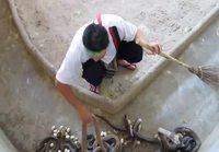 Mies siivoaa kobran pesää