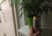 Keskiviikko-oluen aika