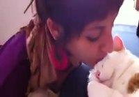 Kissalle pusua