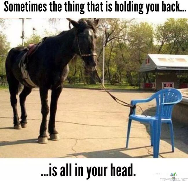 Sometimes the thing that is holding you back.. - Is all in your head.