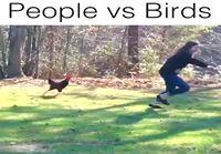 Ihmiset vastaan linnut