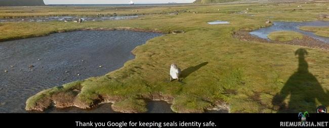 Google pitää huolen yksityisyydestäsi