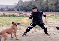 Koirien kanssa ulkona