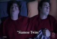 Siamilaiset kaksoset