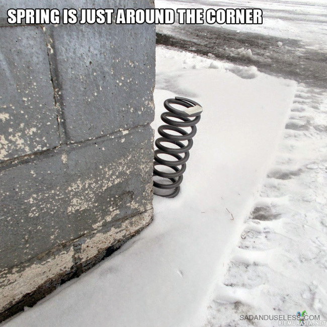 Good news! - Spring is just around the corner!