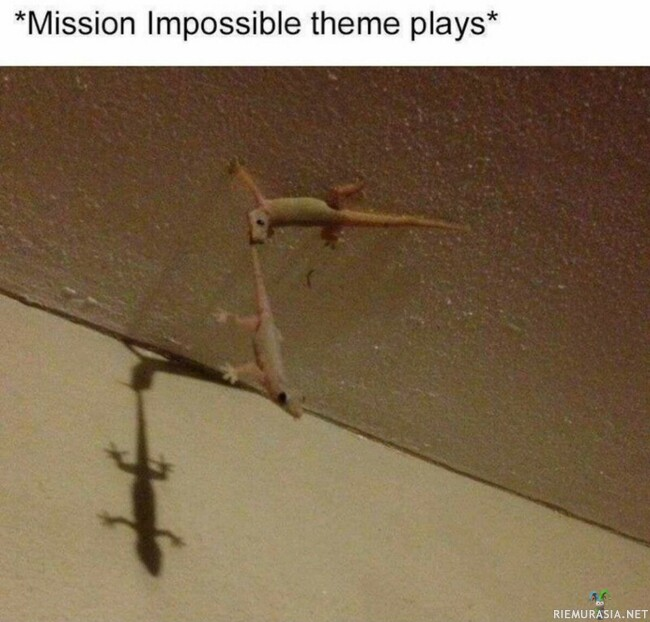 Mission - Impossible? Impossible!