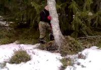 Perse edellä puuhun