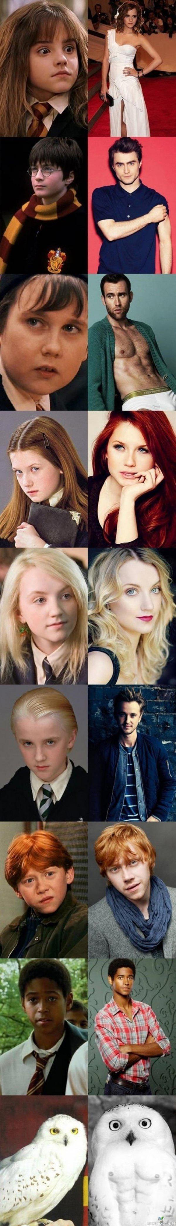 Harry Potter Näyttelijät