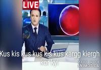 Uutiset siansaksaksi