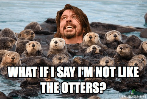 What if I say I'm not like the otters