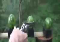 Smith & Wesson .500 magnum vs. vesimelonit