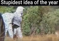 Niin huono idea