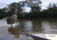 Veneellä keulimista
