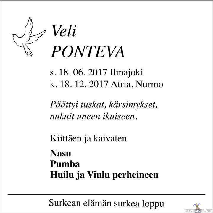 Veli Ponteva