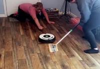 Curlingia kotioloissa