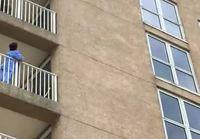 Pesukarhu kiipeilemässä kerrostalon seinää pitkin