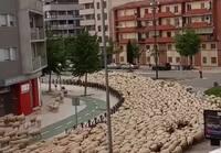 Liikenneruuhka Espanjassa