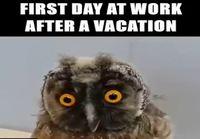 Ensimmäinen päivä töissä loman jälkeen