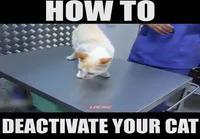 Kissan deaktivointi