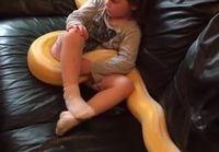 Pikkutyttö ja Python tv:n äärellä