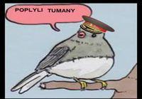 Ärsyyntynyt lintu
