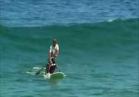 Koirat surffaa