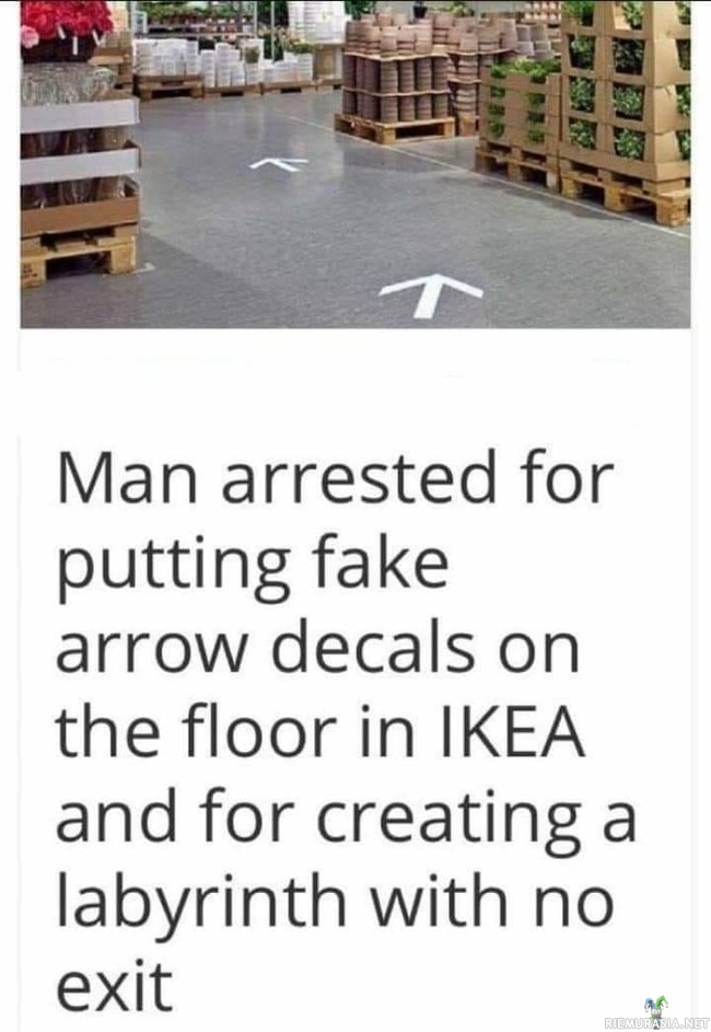Meanwhile in the IKEA - Glorious bastard indeed.