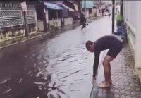 Uintia kadulla